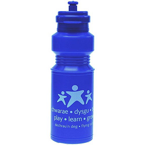 250ml Lunchboxer Sports Water Bottle