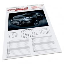 Printed Maxi Wall Calendar for offices