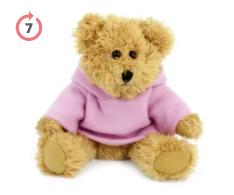 20cm Sparkie Bear with Hoody