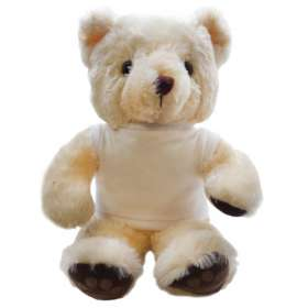15 Inch Chester Bear with T Shirt