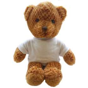 15 Inch Jango Bear with T Shirt