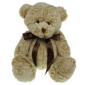 25cm Premium Fudge Teddy Bears