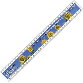 30cm Value Plastic Rulers