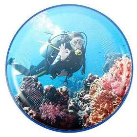 Full Colour Frisbee