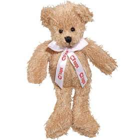Product Image of Scraggy Teddy Bears