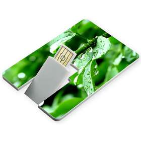USB Flashdrive Credit Card