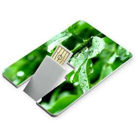 USB Flashdrive Credit Card
